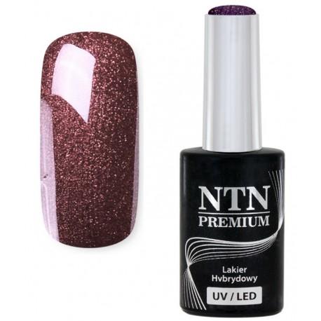 19. NTN Lakier żelowy LED/UV - PREMIUM 6ml