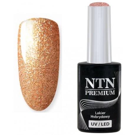 107. NTN Lakier hybrydowy LED/UV - PREMIUM 6ml