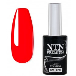 66. NTN Lakier hybrydowy LED/UV - PREMIUM 6ml