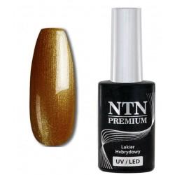 81. NTN Lakier hybrydowy LED/UV - PREMIUM 6ml