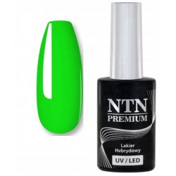 146. NTN Lakier hybrydowy LED/UV - PREMIUM 6ml
