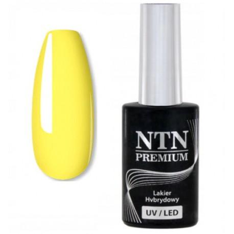 147. NTN Lakier hybrydowy LED/UV - PREMIUM 6ml
