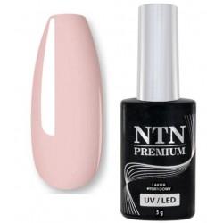 60. NTN Lakier hybrydowy LED/UV - PREMIUM 6ml
