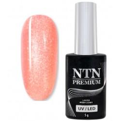29. NTN Lakier hybrydowy LED/UV - PREMIUM 6ml