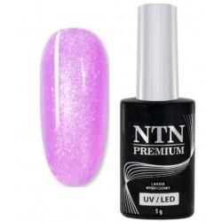 48. NTN Lakier hybrydowy LED/UV - PREMIUM 6ml