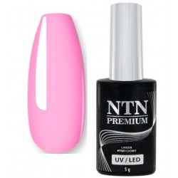 33. NTN Lakier hybrydowy LED/UV - PREMIUM 6ml