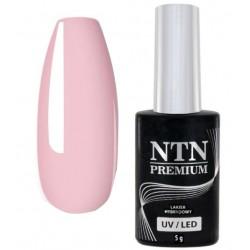 34. NTN Lakier hybrydowy LED/UV - PREMIUM 6ml