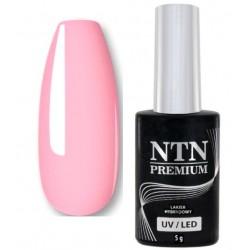 50. NTN Lakier hybrydowy LED/UV - PREMIUM 6ml