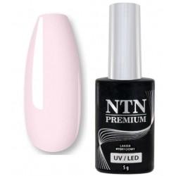 46. NTN Lakier hybrydowy LED/UV - PREMIUM 6ml