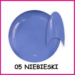 Żel kolorowy NTN 06