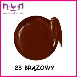 Żel kolorowy NTN 24