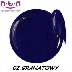 Żel kolorowy NTN 01