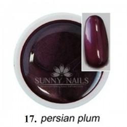 Żel kolorowy (17) Sunny Nails