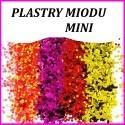 Plastry Miodu Mini